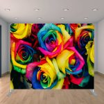 Colorful Large Roses